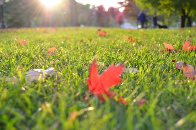 Preparing Your Home for Winter Season Starts in Early Fall
